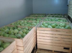 отопление на овощехранилищах и овощебазах