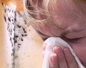 Почему в квартире образуется грибок