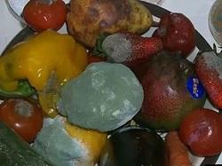 плесень на базе овощей