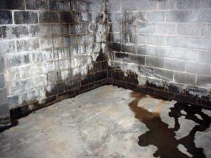 почему потеют и мокнут стены в гараже
