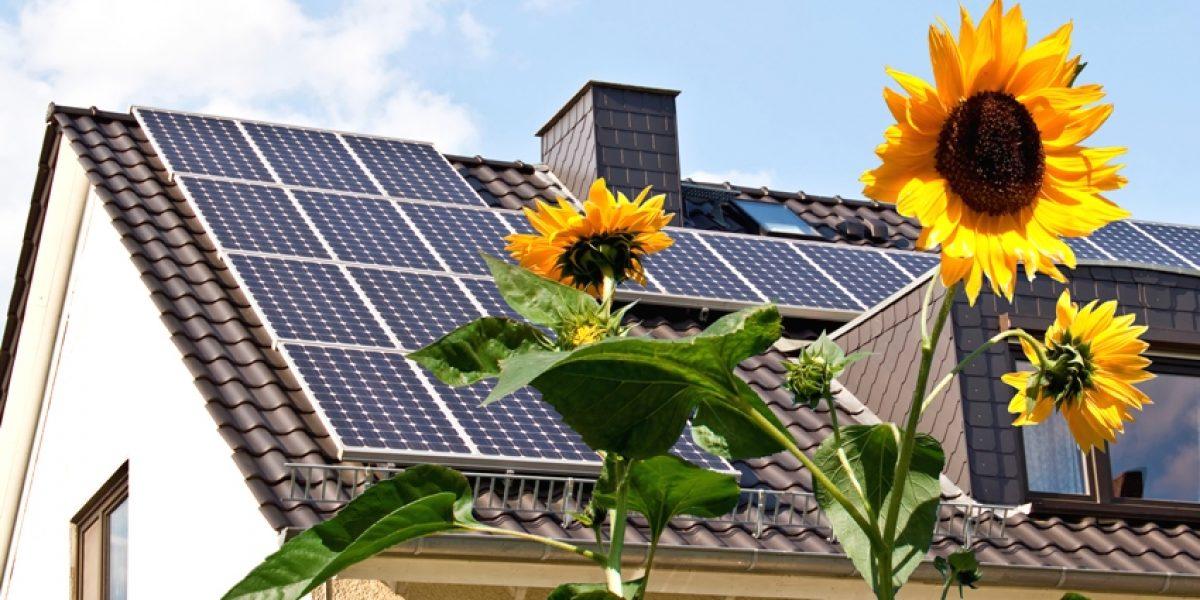 Как определить качество солнечной батареи