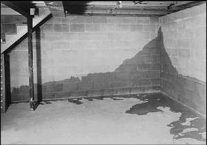 Влажность в подвале
