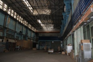 плесень на складе