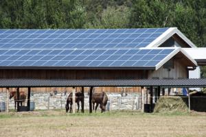 фермы на солнечной энергии