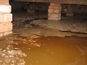 влажность в подвале многоквартирного дома